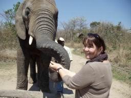 Elephant_10.jpg